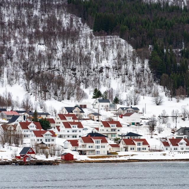 """""""Coastal Settlement, Norway"""" stock image"""