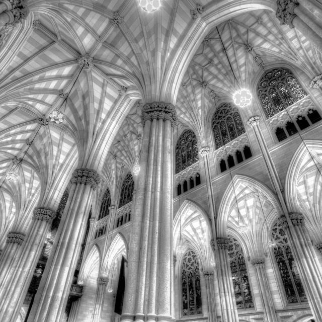 """""""St Patrick's Cathedral"""" stock image"""