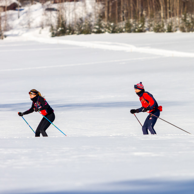 """cross country skiing in Norway"" stock image"