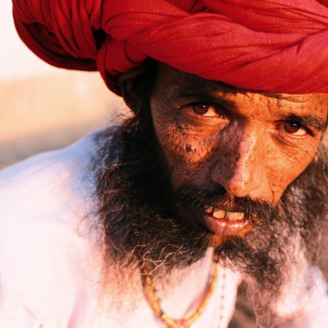 """""""Rebari ( India)"""" stock image"""