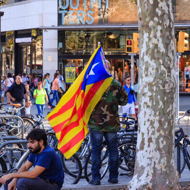 """Protester Carrying Estalada Flag"" stock image"
