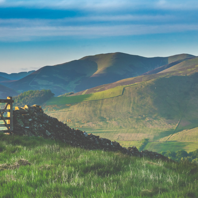 """""""Scottish Landscape With Dry Stone Wall"""" stock image"""