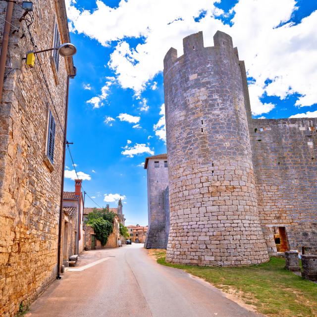 """Village of Svetvincenat ancient square and stone landmarks view"" stock image"