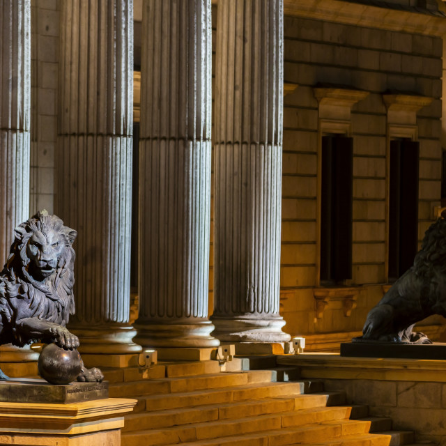 """""""Lion esculture at the Spanish congress of Deputies"""" stock image"""