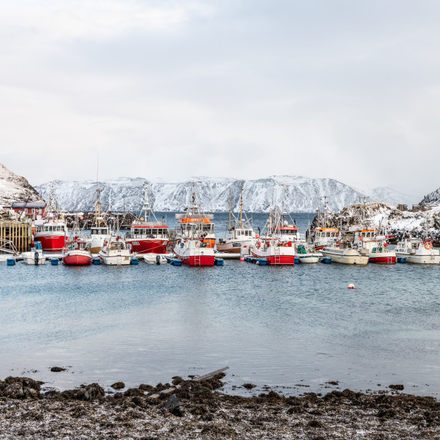 """Fishing Boats, Kamøyvær, Finnmark, Norway"" stock image"