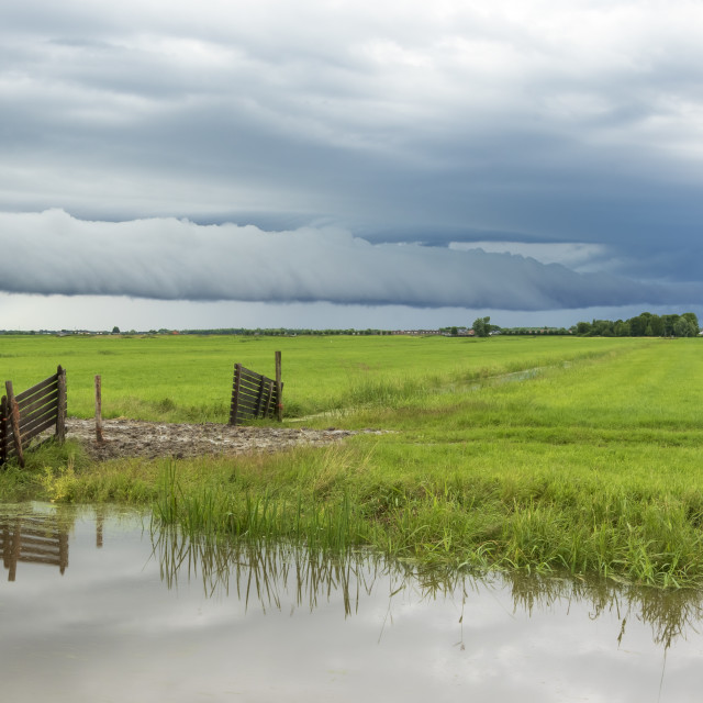 """Shelf cloud and thunderstorm passing above green farmland and water"" stock image"