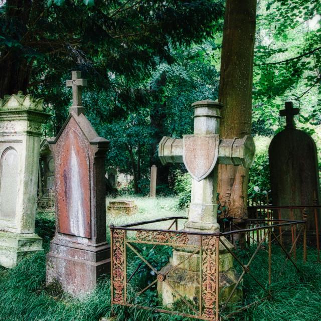 """""""Unique Graves"""" stock image"""