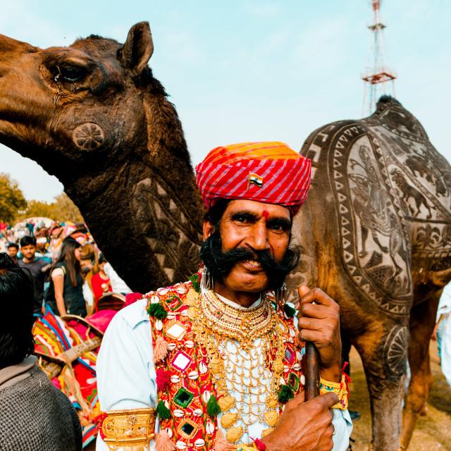 """""""Camel Fare Festival India"""" stock image"""