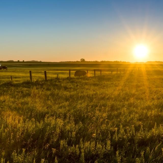 """Canadian Prairie Daybreak"" stock image"