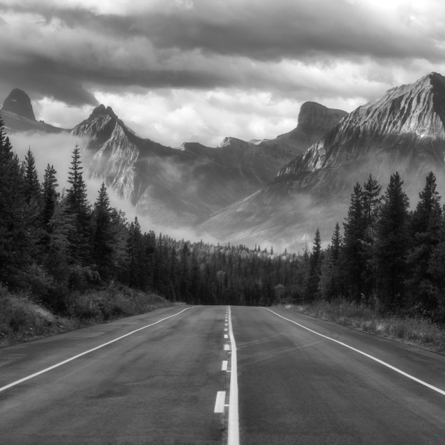 """Alberta Highway"" stock image"
