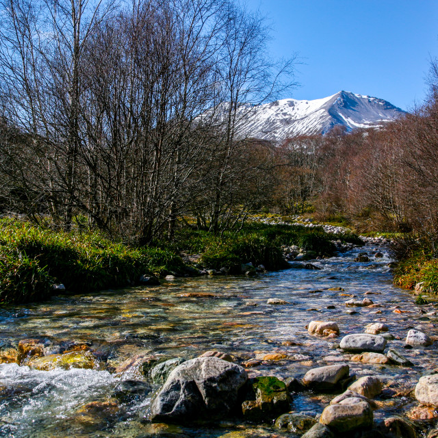 """""""Clear Mountain Stream"""" stock image"""