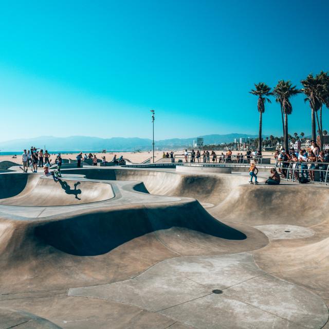 """""""Venice beach skate park by the ocean."""" stock image"""