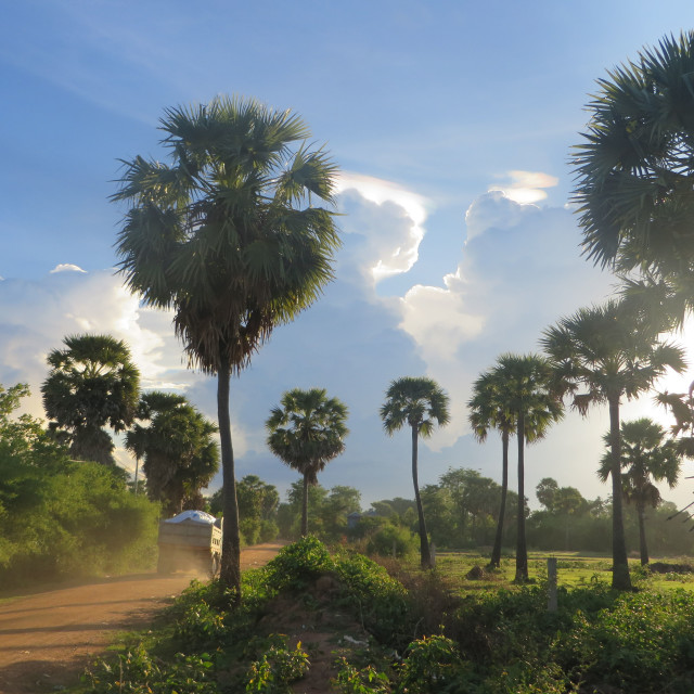 """Dirt Roads in the Cambodian Plains"" stock image"