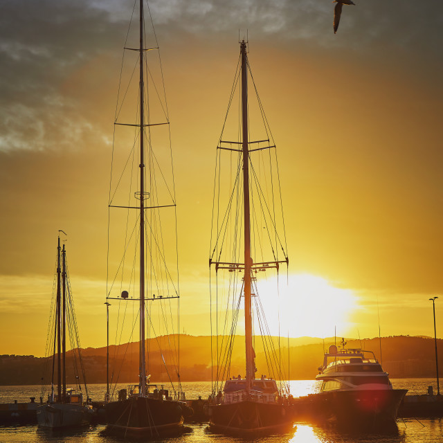 """Sunset light with big sailboats in a harbor the Spanish town Palamos in Costa Brava"" stock image"