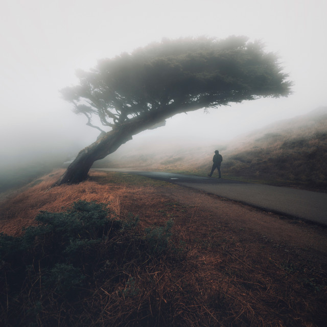 """""""Moody Point Reyes"""" stock image"""