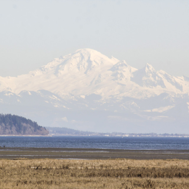 """Mount Baker viewed from across Canadian border"" stock image"