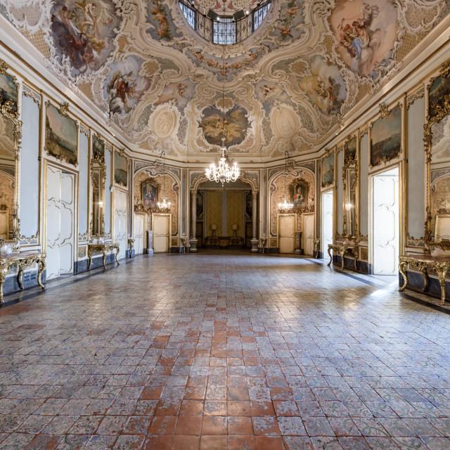 """Palazzo Biscari interiors"" stock image"