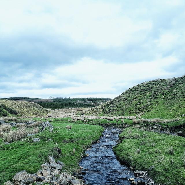 """""""Typical Irish Landscape"""" stock image"""