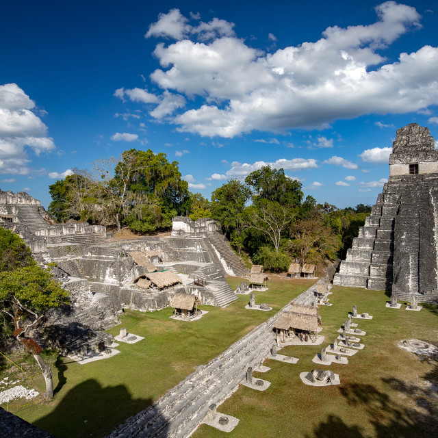 """""""Tikal, Mayan ruins rising out from the Guatemala rainforest."""" stock image"""