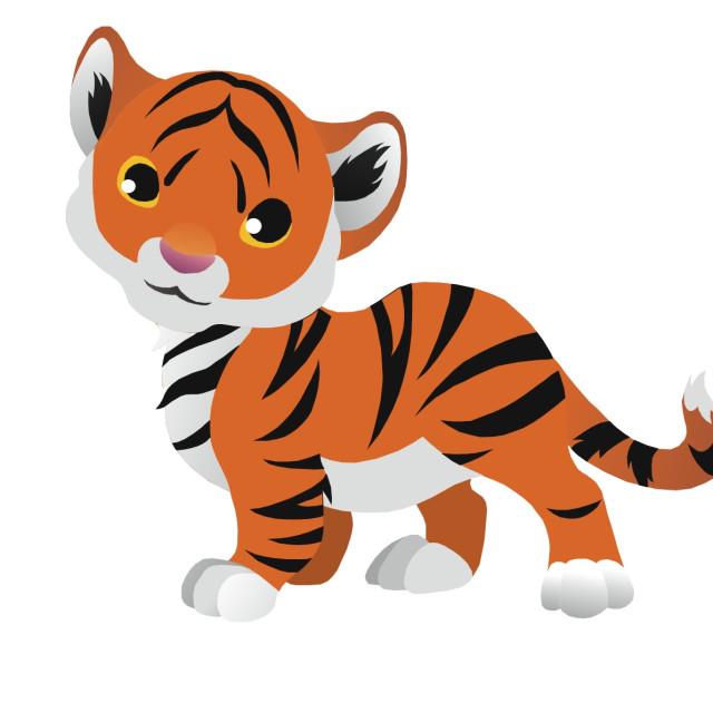 """Tiger Koolamooloo"" stock image"