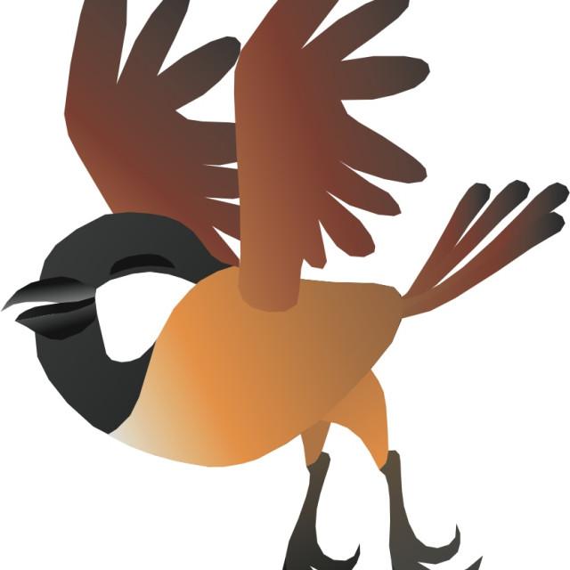 """Chickadee Koolamooloo"" stock image"