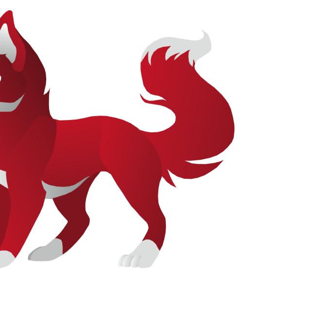 """Red Fox Koolamooloo"" stock image"