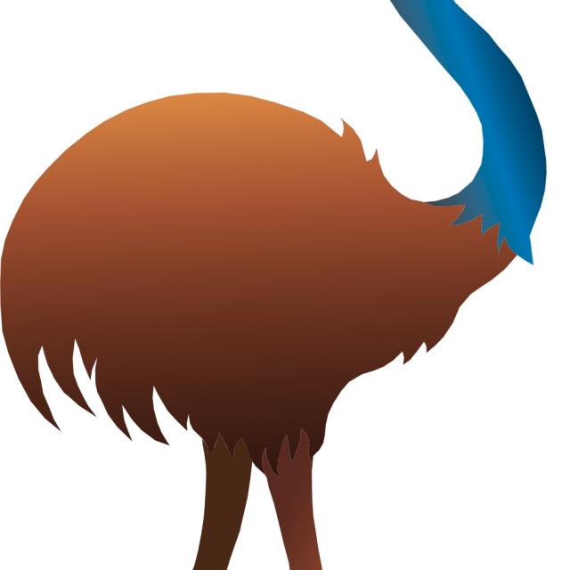 """Emu Koolamooloo"" stock image"