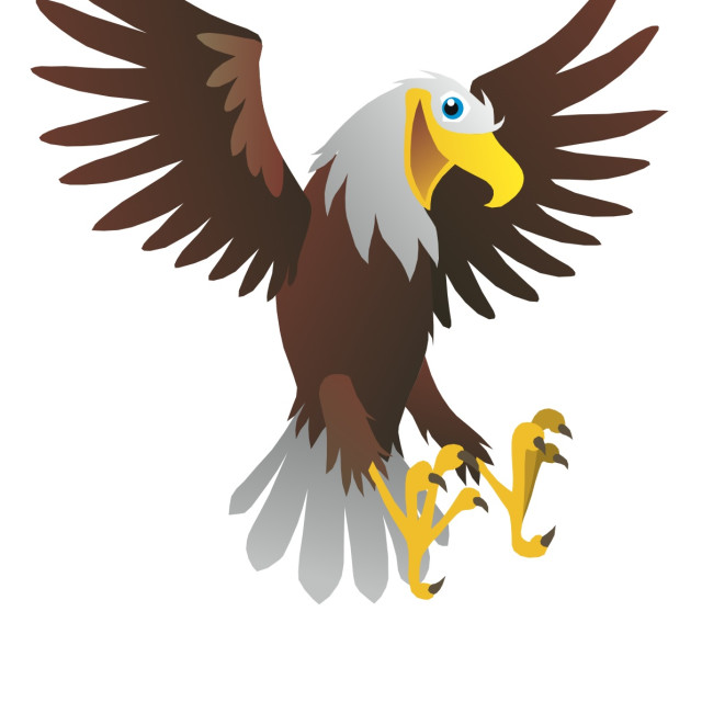 """Bald Eagle Koolamooloo"" stock image"