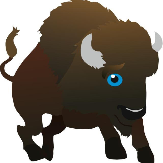 """""""Bison Koolamooloo"""" stock image"""