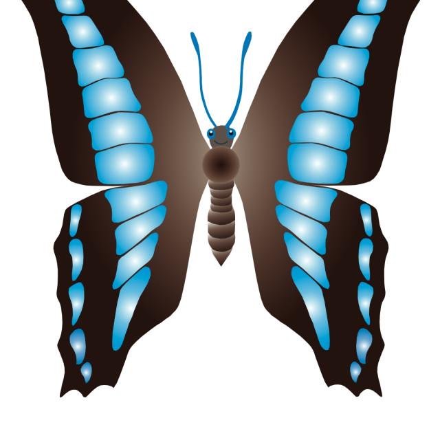 """""""Butterfly Koolamooloo"""" stock image"""
