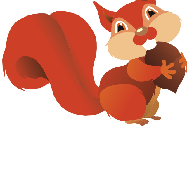 """Red Squirrel Koolamooloo"" stock image"