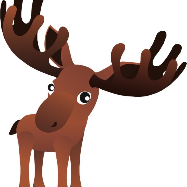"""Bull Moose Koolamooloo"" stock image"