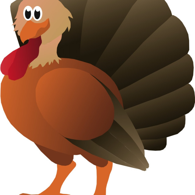"""Turkey Koolamooloo"" stock image"