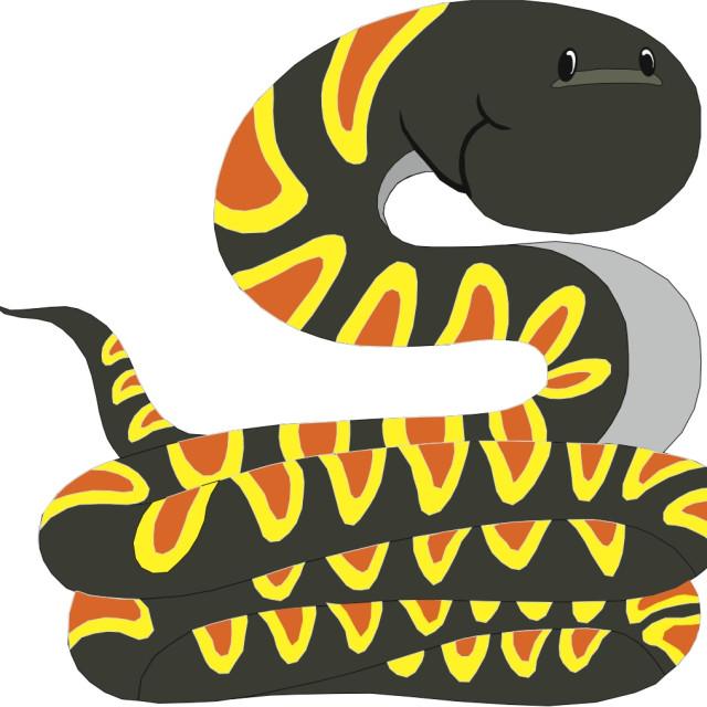 """Snake Koolamooloo"" stock image"