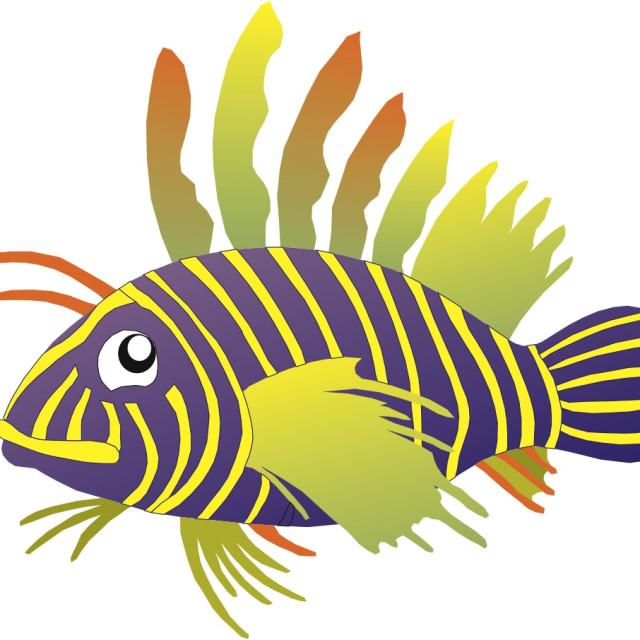 """Lion Fish Koolamooloo"" stock image"