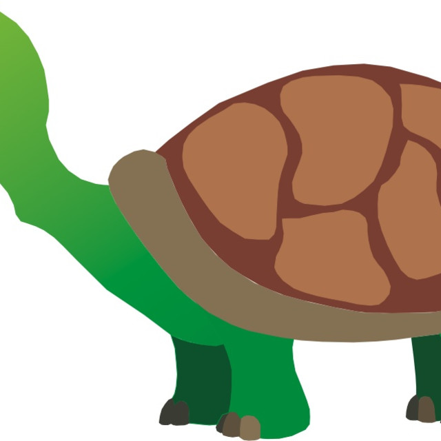 """Turtle Koolamooloo"" stock image"