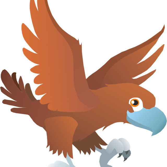 """Wedge Tailed Eagle Koolamooloo"" stock image"