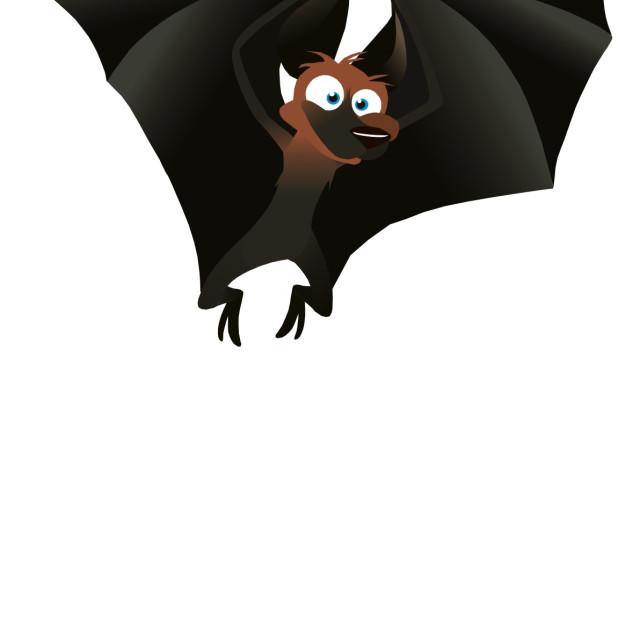"""Fruit Bat Koolamooloo"" stock image"