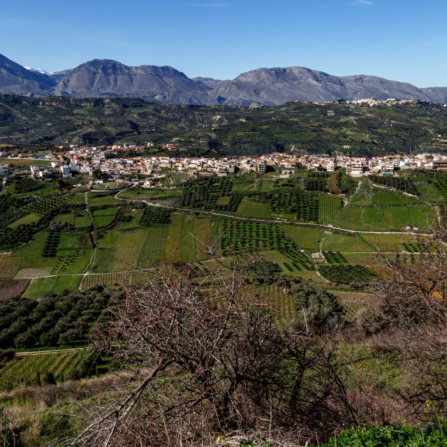 """Dafnes Village Crete Greece (2)"" stock image"