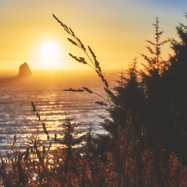 """""""Sunset by the Pacific"""" stock image"""