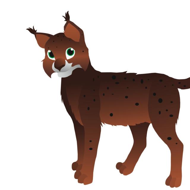 """Lynx Koolamooloo"" stock image"