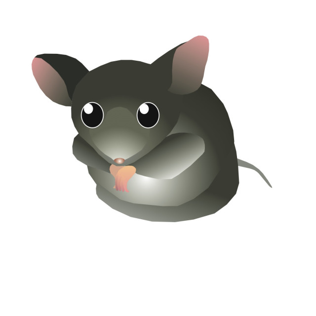 """Mouse Koolamooloo"" stock image"