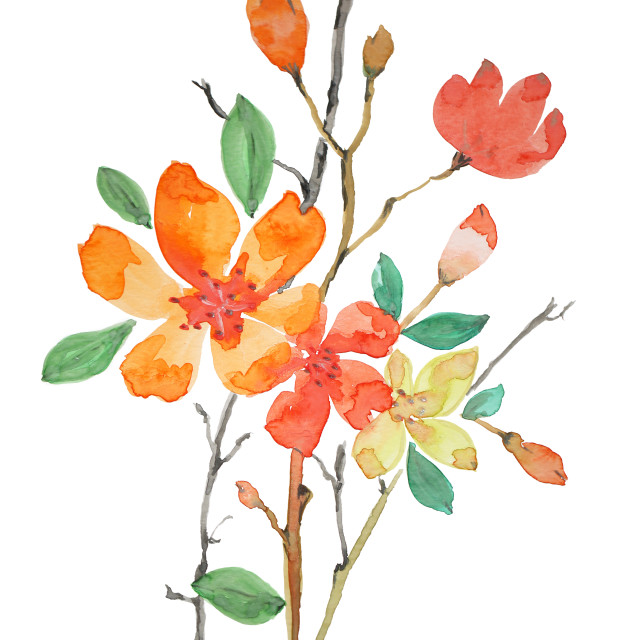 """Watercolour Painted Flowers"" stock image"