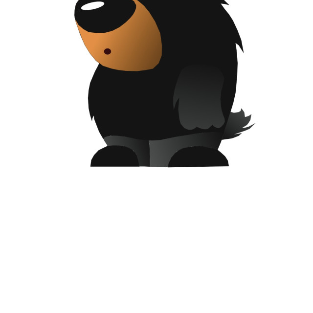"""""""Black Bear Koolamooloo"""" stock image"""