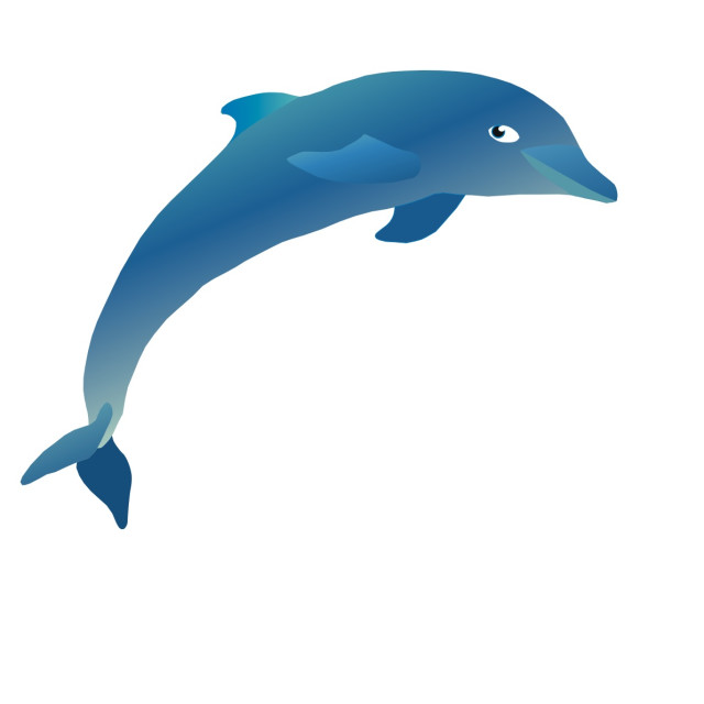 """Dolphin Koolamooloo"" stock image"