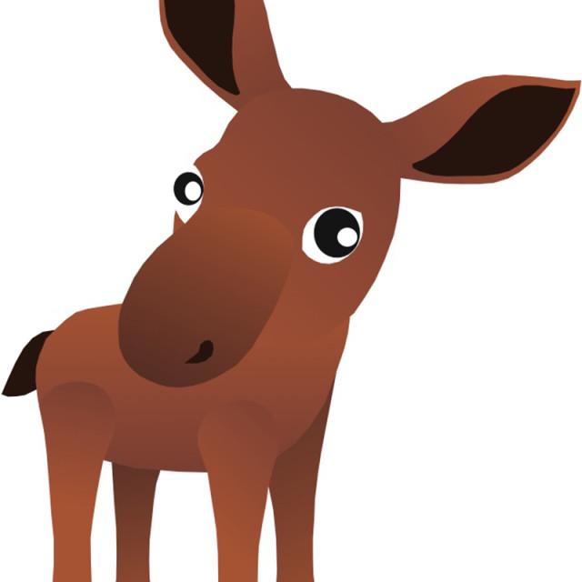 """""""Cow Moose Koolamooloo"""" stock image"""
