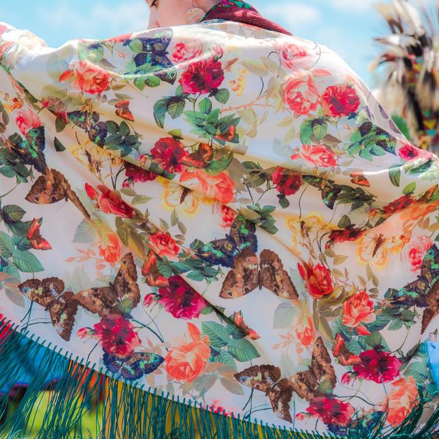"""NATIVE AMERICAN , BEAUTIFUL SHAWL"" stock image"