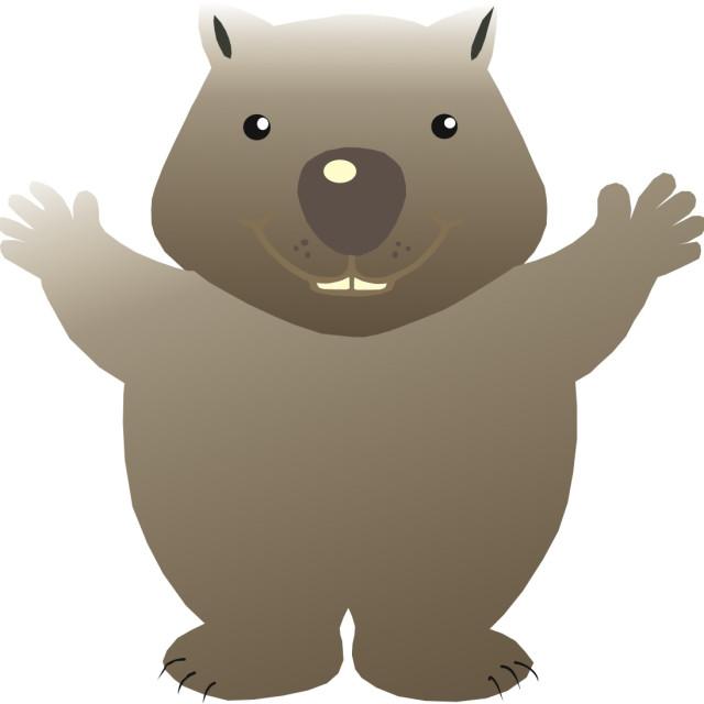 """""""Wombat Koolamooloo"""" stock image"""