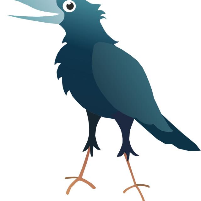 """""""Crow Koolamooloo"""" stock image"""