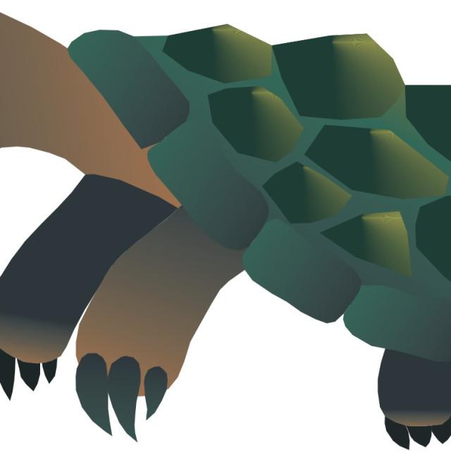 """""""Snapping Turtle Koolamooloo"""" stock image"""